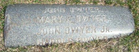 DWYER, JOHN JR. - Cook County, Illinois | JOHN JR. DWYER - Illinois Gravestone Photos