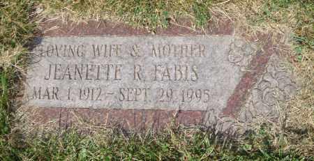FABIS, JEANETTE R. - Cook County, Illinois | JEANETTE R. FABIS - Illinois Gravestone Photos