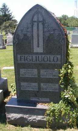 FIGLIUOLO, WILLIAM FLEURA - Cook County, Illinois | WILLIAM FLEURA FIGLIUOLO - Illinois Gravestone Photos