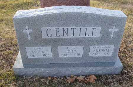 GENTILE, PASQUALE - Cook County, Illinois | PASQUALE GENTILE - Illinois Gravestone Photos