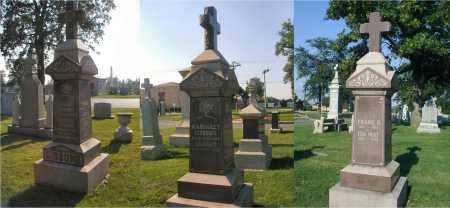 GIBBONS, FRANK D. - Cook County, Illinois   FRANK D. GIBBONS - Illinois Gravestone Photos