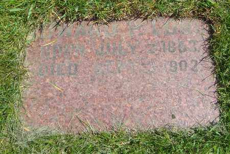LONG, EDWARD P. - Cook County, Illinois | EDWARD P. LONG - Illinois Gravestone Photos