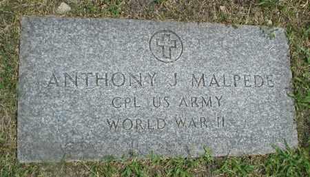MALPEDE, ANTHONY J. - Cook County, Illinois | ANTHONY J. MALPEDE - Illinois Gravestone Photos