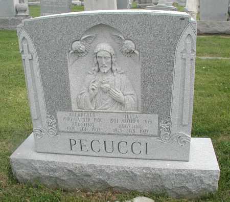 PECUCCI, AGOSTINO - Cook County, Illinois   AGOSTINO PECUCCI - Illinois Gravestone Photos