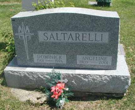 SALTARELLI, DOMINICK - Cook County, Illinois | DOMINICK SALTARELLI - Illinois Gravestone Photos