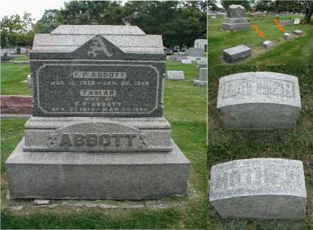 ABBOTT, F. P. - DuPage County, Illinois | F. P. ABBOTT - Illinois Gravestone Photos