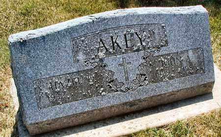 AKEY, JOHN A. - DuPage County, Illinois | JOHN A. AKEY - Illinois Gravestone Photos