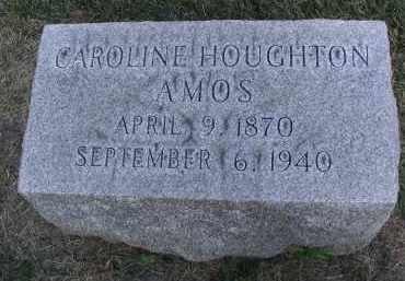 HOUGHTON AMOS, CAROLINE - DuPage County, Illinois | CAROLINE HOUGHTON AMOS - Illinois Gravestone Photos