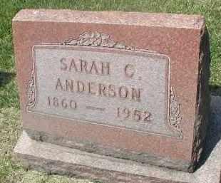 ANDERSON, SARAH C. - DuPage County, Illinois | SARAH C. ANDERSON - Illinois Gravestone Photos