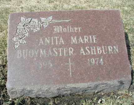 ASHBURN, ANITA MARIE - DuPage County, Illinois   ANITA MARIE ASHBURN - Illinois Gravestone Photos