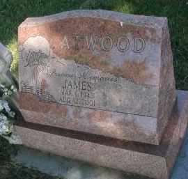 ATWOOD, JAMES - DuPage County, Illinois | JAMES ATWOOD - Illinois Gravestone Photos