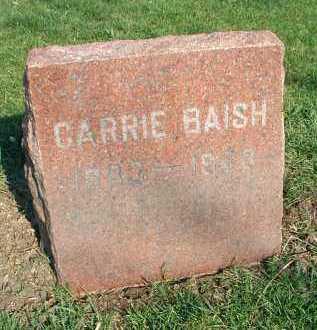 BAISH, CARRIE - DuPage County, Illinois | CARRIE BAISH - Illinois Gravestone Photos