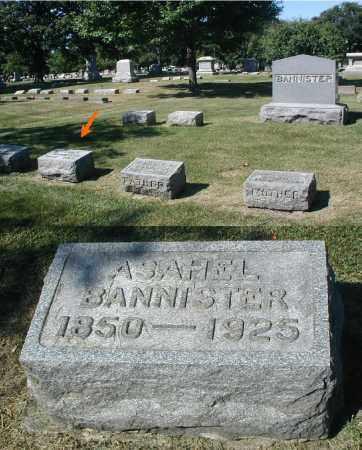 BANNISTER, ASAHEL - DuPage County, Illinois | ASAHEL BANNISTER - Illinois Gravestone Photos