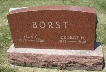 BORST, GEORGE W. - DuPage County, Illinois | GEORGE W. BORST - Illinois Gravestone Photos