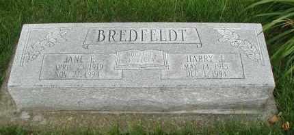 BREDFELD, HARRY J. - DuPage County, Illinois | HARRY J. BREDFELD - Illinois Gravestone Photos