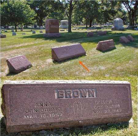 BROWN, ANNA - DuPage County, Illinois | ANNA BROWN - Illinois Gravestone Photos