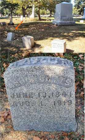 BUTTS, AARON - DuPage County, Illinois | AARON BUTTS - Illinois Gravestone Photos