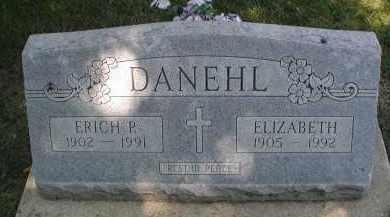 DANEHL, ERICH P. - DuPage County, Illinois | ERICH P. DANEHL - Illinois Gravestone Photos