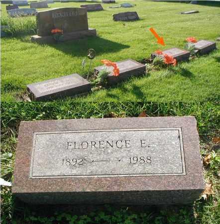DANIELS, FLORENCE E. - DuPage County, Illinois | FLORENCE E. DANIELS - Illinois Gravestone Photos