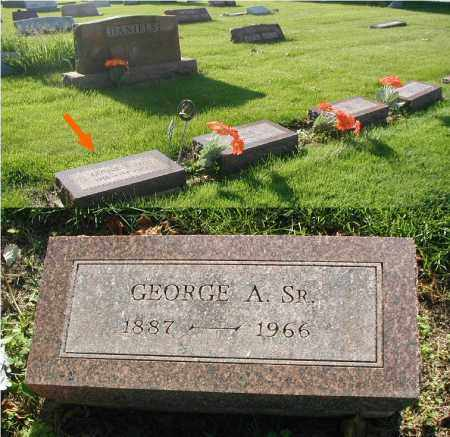 DANIELS, GEORGE A. SR. - DuPage County, Illinois | GEORGE A. SR. DANIELS - Illinois Gravestone Photos