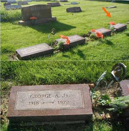DANIELS, GEORGE A. JR. - DuPage County, Illinois | GEORGE A. JR. DANIELS - Illinois Gravestone Photos