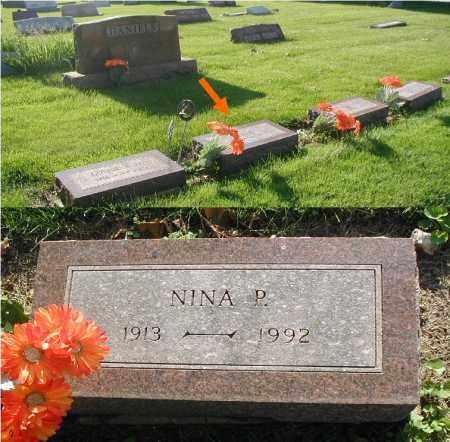 DANIELS, NINA P. - DuPage County, Illinois | NINA P. DANIELS - Illinois Gravestone Photos