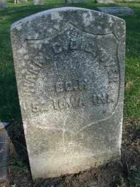 DICKOVER, HARRY C. - DuPage County, Illinois | HARRY C. DICKOVER - Illinois Gravestone Photos