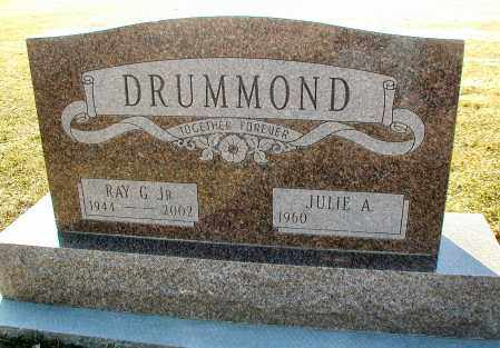 DRUMMOND, RAY G., JR. - DuPage County, Illinois   RAY G., JR. DRUMMOND - Illinois Gravestone Photos
