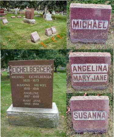 EICHELBERGER, SUSANNA - DuPage County, Illinois | SUSANNA EICHELBERGER - Illinois Gravestone Photos