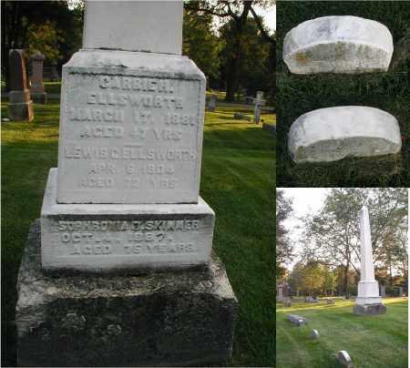 ELLSWORTH, LEWIS C. - DuPage County, Illinois   LEWIS C. ELLSWORTH - Illinois Gravestone Photos