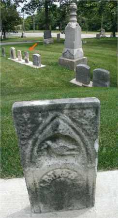 FRASIER, ARTHUR E. - DuPage County, Illinois | ARTHUR E. FRASIER - Illinois Gravestone Photos