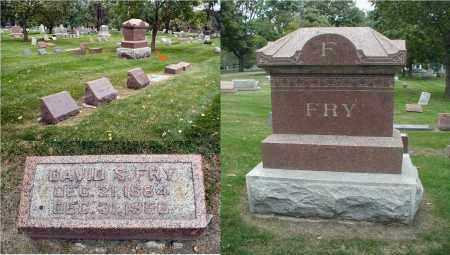 FRY, DAVID S. - DuPage County, Illinois | DAVID S. FRY - Illinois Gravestone Photos