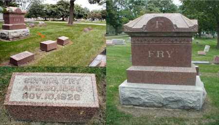 FRY, SOPHIA - DuPage County, Illinois | SOPHIA FRY - Illinois Gravestone Photos
