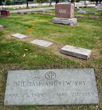 FRY, WILLIAM ANDREW - DuPage County, Illinois | WILLIAM ANDREW FRY - Illinois Gravestone Photos