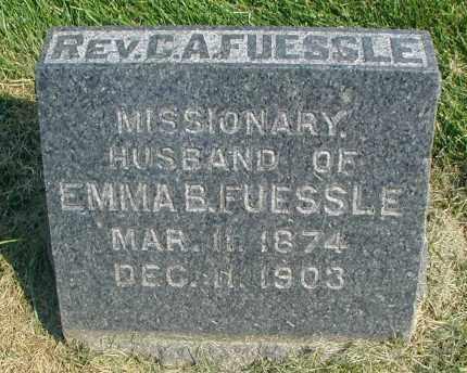 FUESSLE, REV. C. A. - DuPage County, Illinois | REV. C. A. FUESSLE - Illinois Gravestone Photos