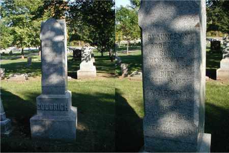 GOODRICH, CHAUNCEY M. - DuPage County, Illinois | CHAUNCEY M. GOODRICH - Illinois Gravestone Photos