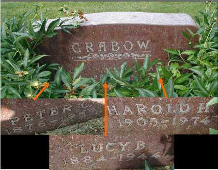 GRABOW, LUCY B. - DuPage County, Illinois | LUCY B. GRABOW - Illinois Gravestone Photos
