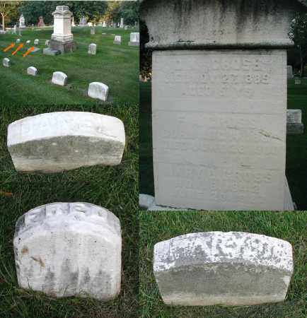 GROSS, FRED A.. - DuPage County, Illinois | FRED A.. GROSS - Illinois Gravestone Photos
