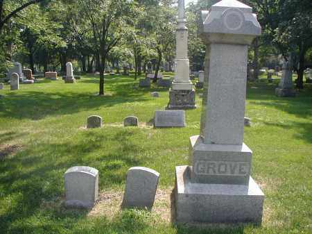 GROVE, HENRY - DuPage County, Illinois | HENRY GROVE - Illinois Gravestone Photos