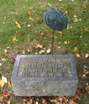 GUSHARD, DAVID - DuPage County, Illinois   DAVID GUSHARD - Illinois Gravestone Photos