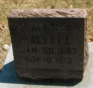 HAEFELE, IDA - DuPage County, Illinois | IDA HAEFELE - Illinois Gravestone Photos