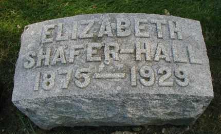 HALL, ELIZABETH - DuPage County, Illinois | ELIZABETH HALL - Illinois Gravestone Photos