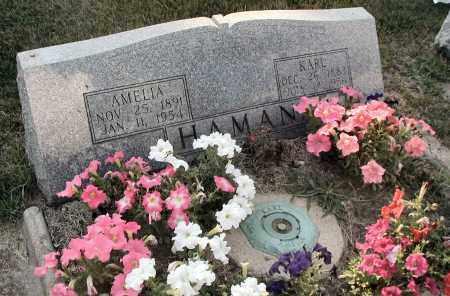 HAMAN, AMELIA - DuPage County, Illinois | AMELIA HAMAN - Illinois Gravestone Photos