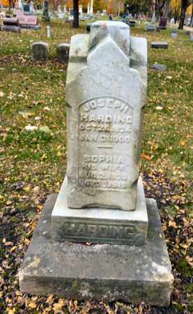HARDING, SOPHIA - DuPage County, Illinois | SOPHIA HARDING - Illinois Gravestone Photos