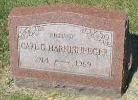 HARNISHFEGER, CARL G. - DuPage County, Illinois | CARL G. HARNISHFEGER - Illinois Gravestone Photos