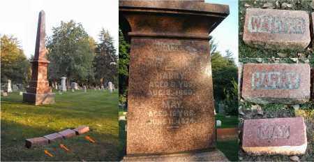 HESS, WALTER - DuPage County, Illinois | WALTER HESS - Illinois Gravestone Photos