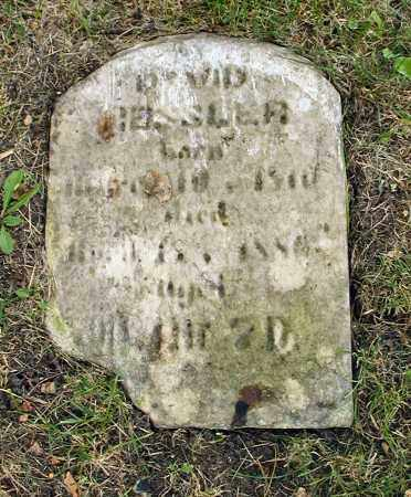 HESSLER, DAVID - DuPage County, Illinois   DAVID HESSLER - Illinois Gravestone Photos
