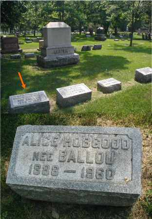 BALLOU HOBGOOD, ALICE - DuPage County, Illinois | ALICE BALLOU HOBGOOD - Illinois Gravestone Photos