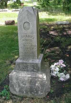 HODEL, JOHANNA - DuPage County, Illinois | JOHANNA HODEL - Illinois Gravestone Photos
