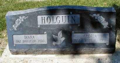 HOLQUIN, DIANA - DuPage County, Illinois | DIANA HOLQUIN - Illinois Gravestone Photos